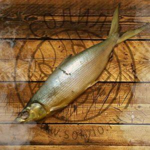 Молочная рыба холодного копчения 800+